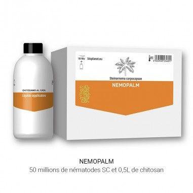 NemoPalm, nématodes pour le contrôle des ravageurs des palmiers
